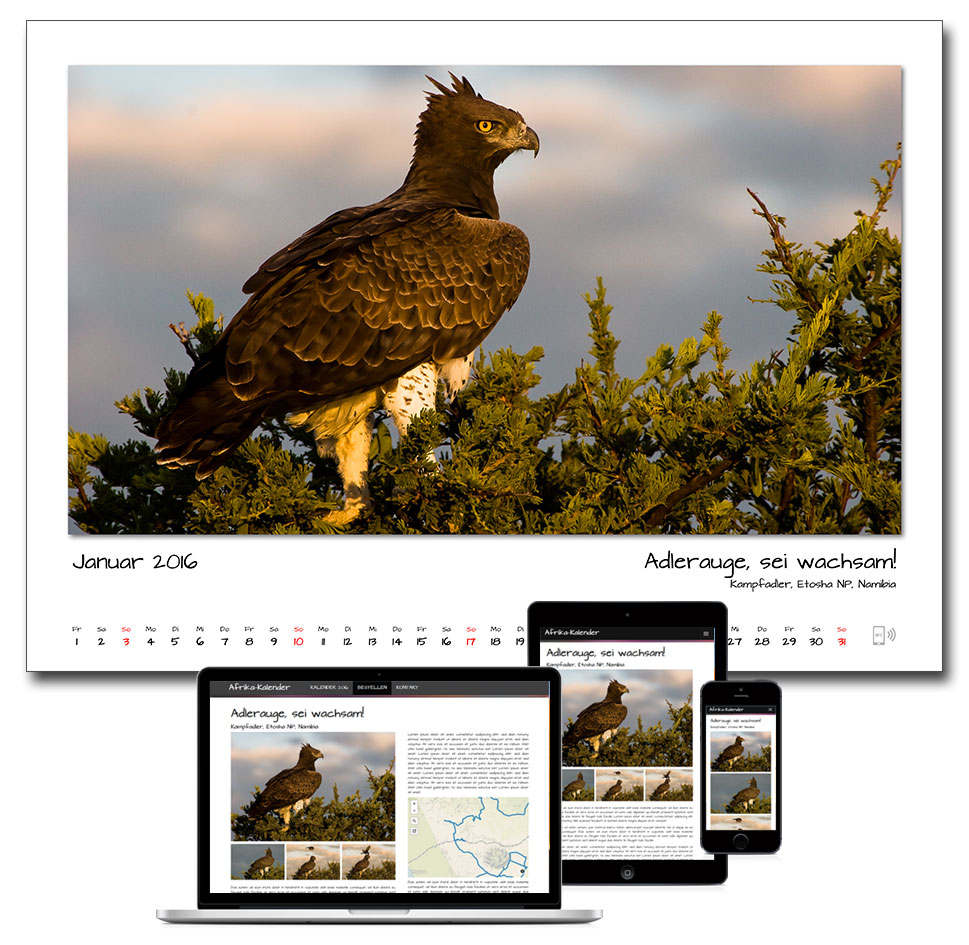 Kalender Computer iPad iPhone